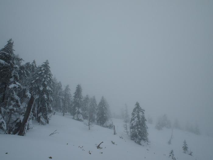雪は降っていないけれど景色はこんな