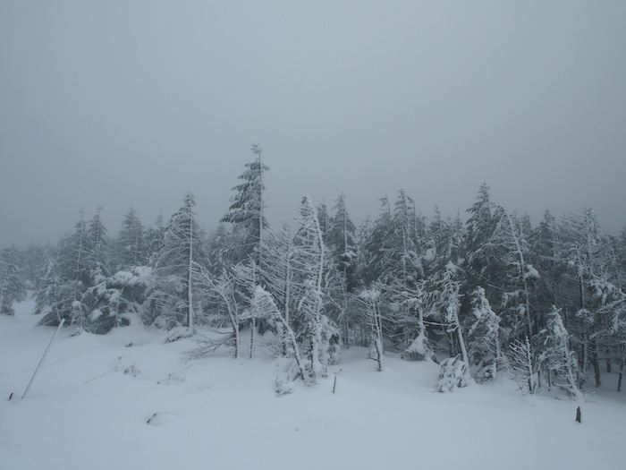 景色ほど寒くはない