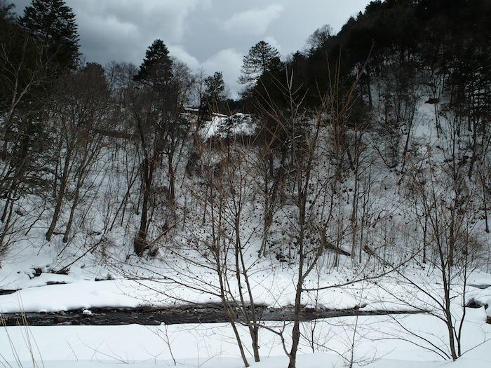 今年は雪が少なめ