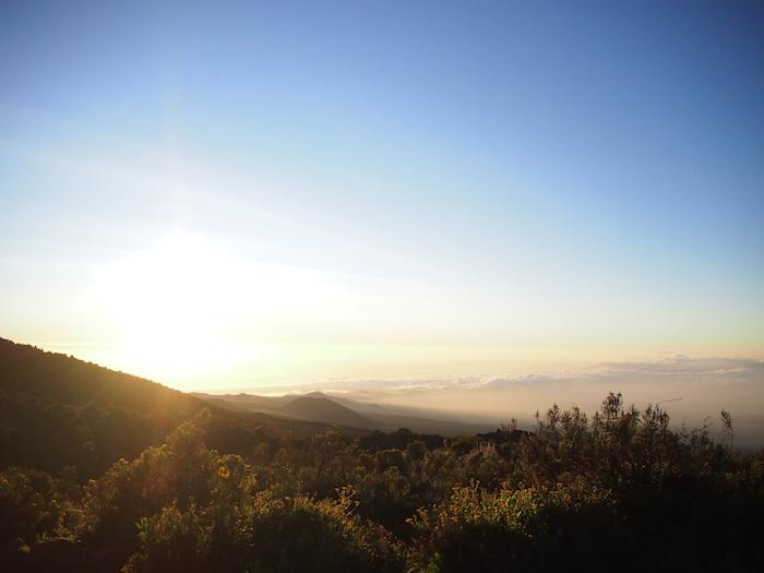 朝は空が眩しくて気分も高揚する