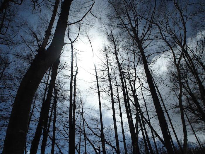 空を見上げて太陽を感じながら、色々なことを思い出しました
