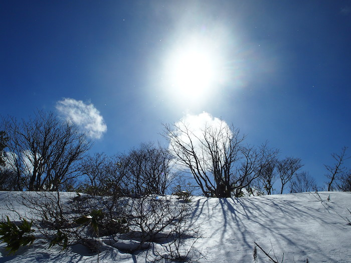 快晴の雪山は気持ち良い!