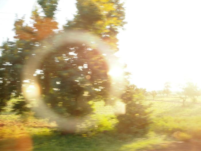 ぼけぼけだけど、日本時間でのニューイヤー記念に撮った写真。夕日の時刻