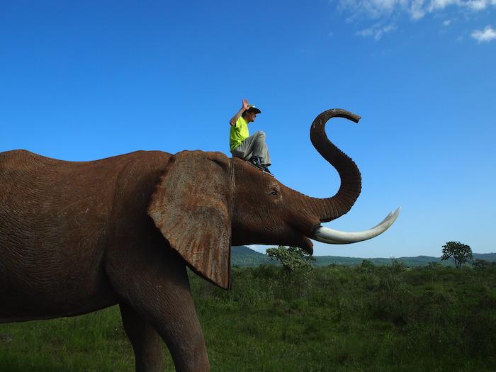 象のハリボテに登ってはしゃぐパーティのメンバー