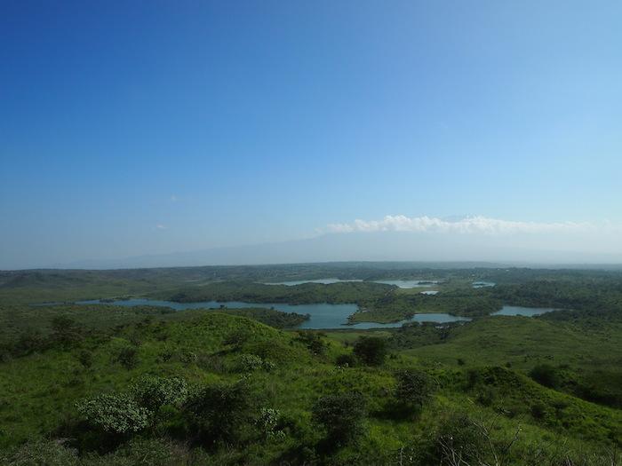 これぞアフリカの大草原