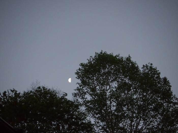 これは朝4時に出ていた明るい月