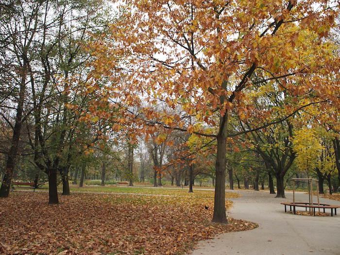 クラシンスキフ庭園は晩秋のヨーロッパ