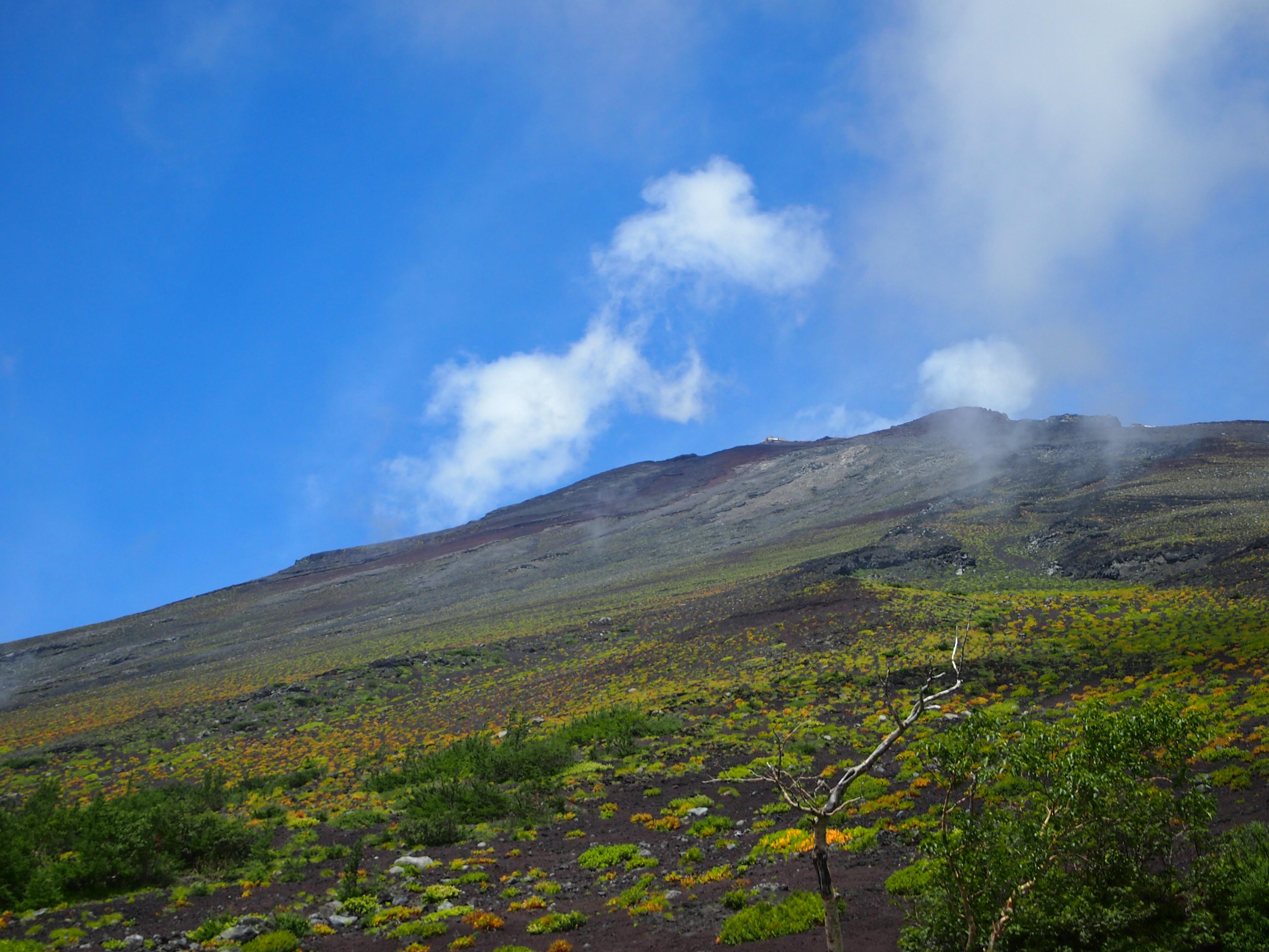 これも一昨年。天気がよければ登り口から山頂まで見渡せます