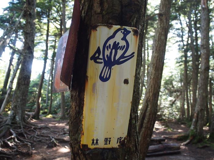 味わいのある林野庁の看板を抜けて・・・