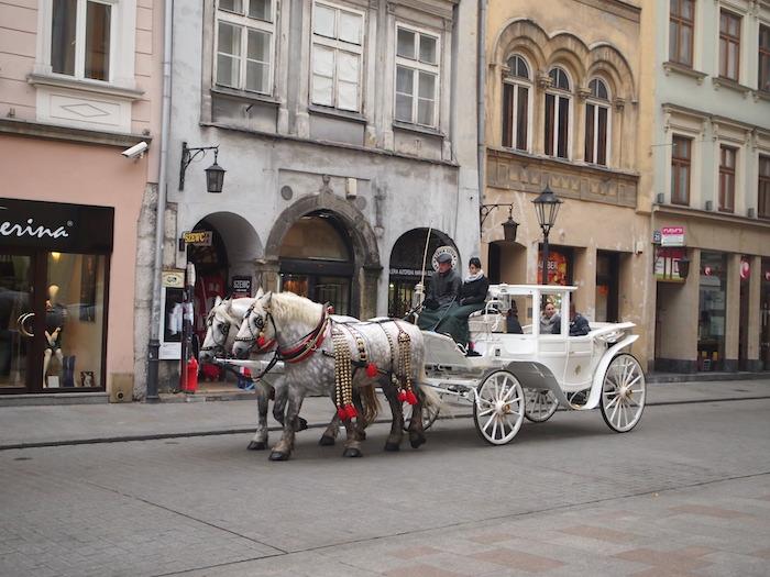 観光用馬車。街中に普通に走っていて、溶け込んでいる
